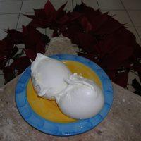 Mozzarella di Bufala Campana da 1Kg