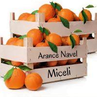 Arance Navel 10 Kilogrammi Azienda Agricola